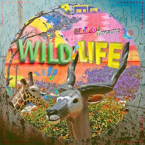 WILD/LIFE – Maloto/Dreams
